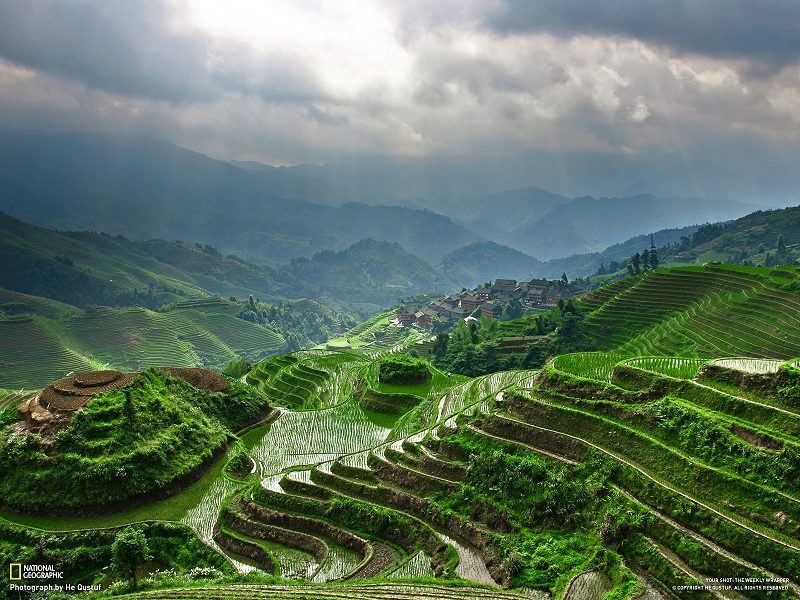 terraces in china. LongJi Terrace, Guilin, China