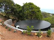 Water Tank, Retaining Walls, and Hibiscus