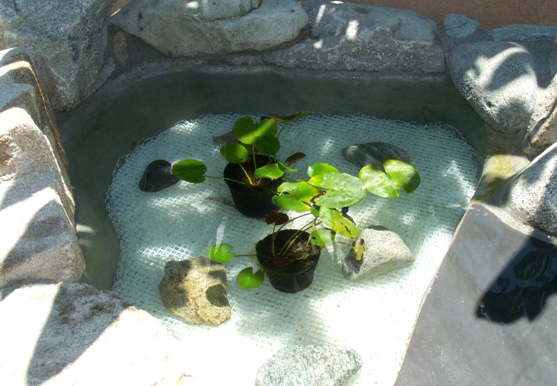 Eric 39 s koi pond biofilter page for Poly fish pond
